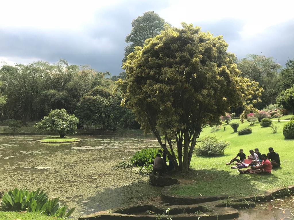 Sri_Lanka_Ayurveda_und_Abenteuer_im_Regen_10